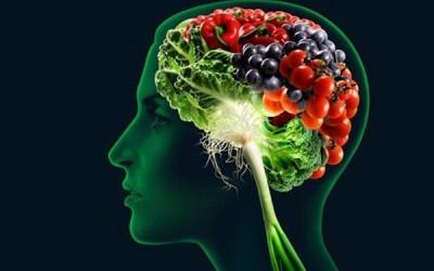 Cervello: l'alimentazione che fa bene alla mente   CURIOSANDOperilWEB